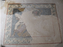 romaine4