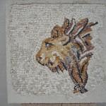 LION  31 cm X 31 cm